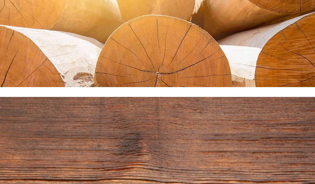 Jaka strugarka do drewna mokrego i suchego?